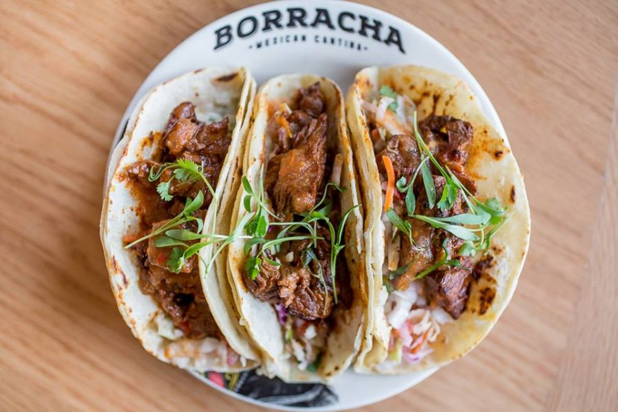 Vote Borracha for Best of Vegas Now Through September 12th