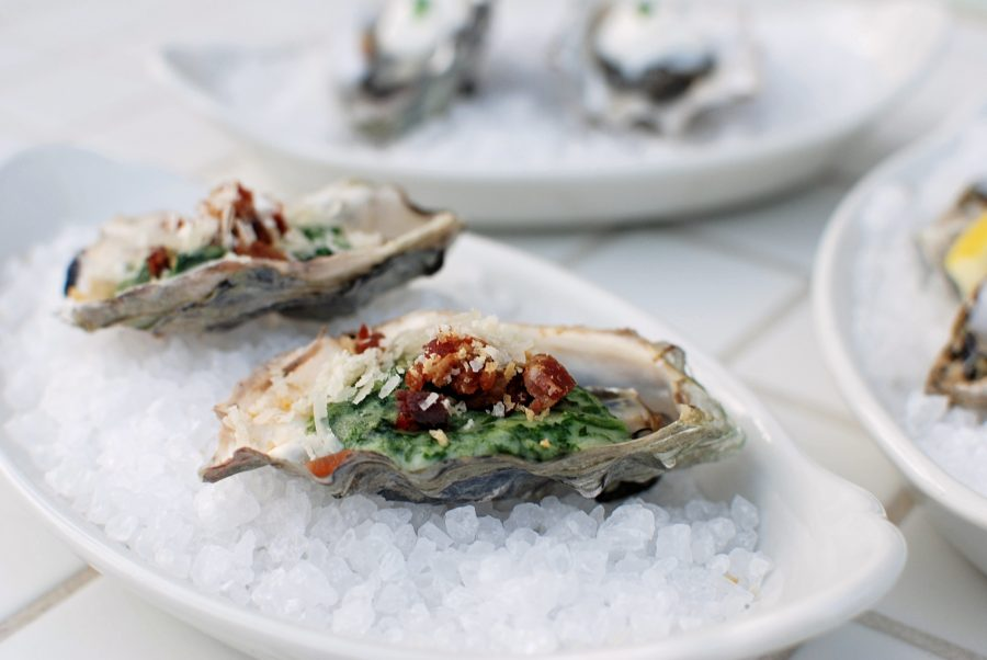 Your Guide To Everything You Would Ever Need to Know About Eating Oysters