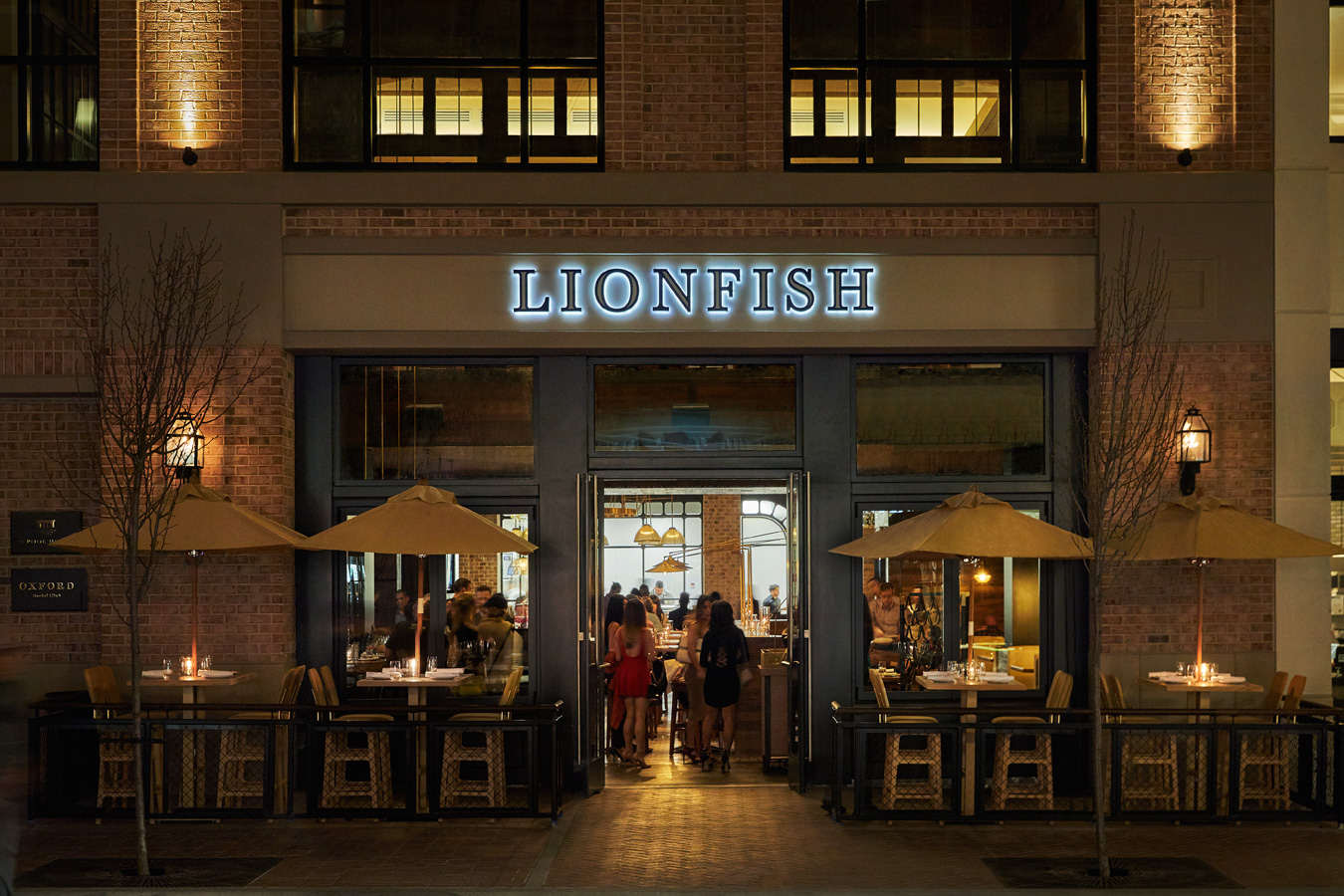 What Makes Lionfish Stand Out?