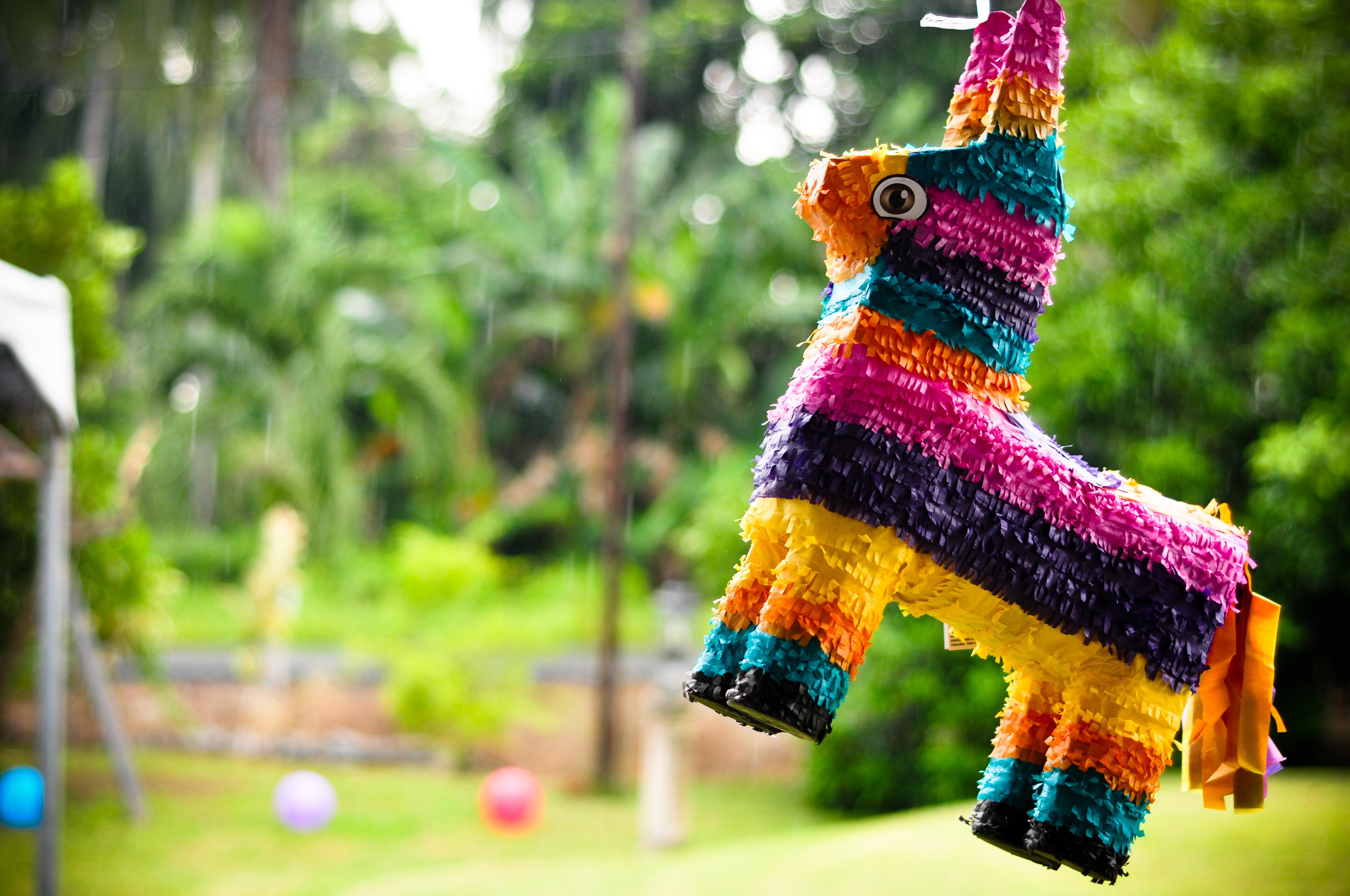 borracha mexican cantina green valley ranch birthday piñata