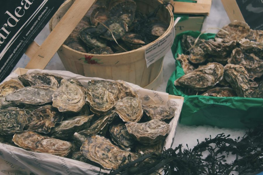 How to Shuck an Oyster- The Chef JoJo Guide