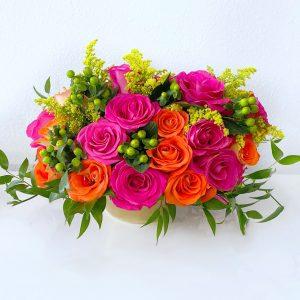 joyful bloom